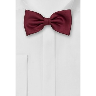 Bow Tie in Burgundy Color