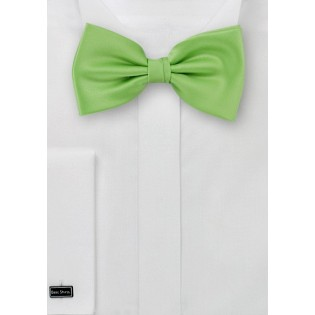 Bow ties  -  Solid apple green men's bow tie