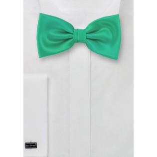 Bow ties  -  Jade green men's bow tie