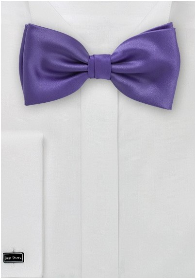Solid Purple Bow Tie