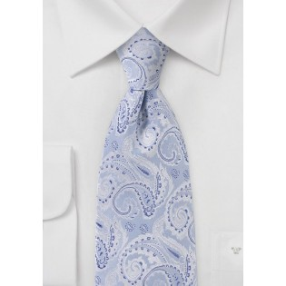 Elegant Blue and Silver Paisley Tie