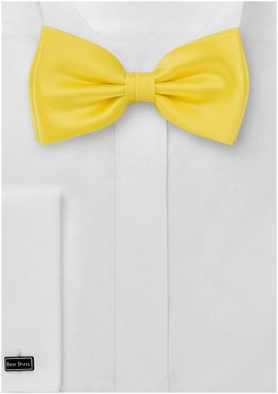 Sunbeam Yellow Bow Tie