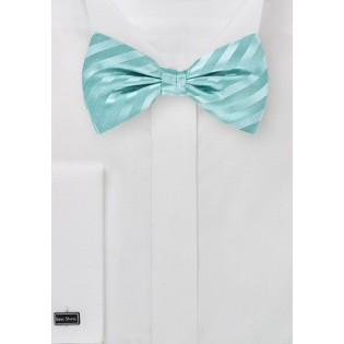 Aqua Blue Bow Tie with Stripes