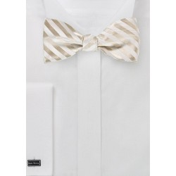 Elegant Self Tie Bow Tie in Ivory