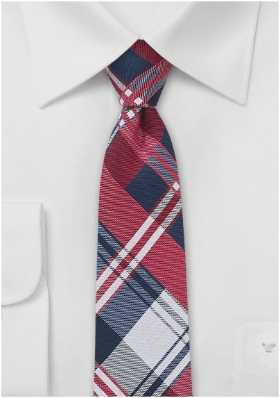Cotton Plaid Skinny Tie in Blue and Red