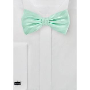 Striped Bow Tie in Honeydew