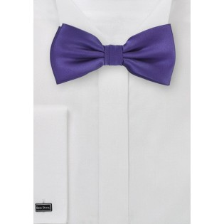 Solid Purple Mens Bow Tie