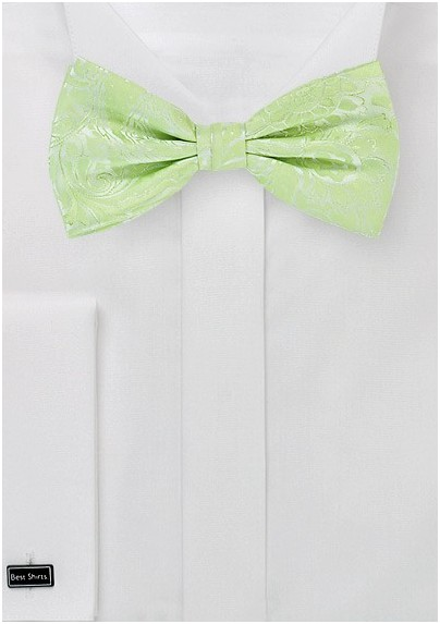 Pale Mint Green Bow Tie with Paisley