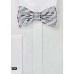 Kids Striped Bow Tie in Silver