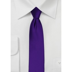 Skinny Tie in Regency Purple
