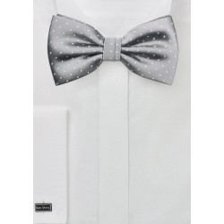 Elegant Bow Tie in Soft Silver and White