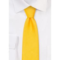 Matte Woven Slim Cut Tie in Blue Bird