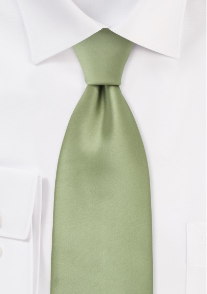 Solid Necktie in Sage Green