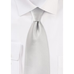 Solid Color Tie in Light Silver