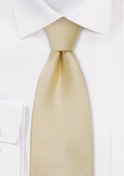 Solid Champagne Color Kids Tie