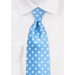 Polka Dot Tie in Alaskan Blue