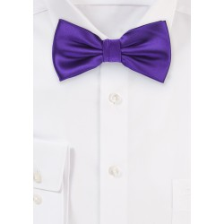 Regency Purple Mens Bow tie