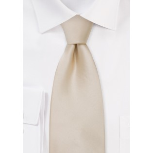 Solid Silk Tie in Champagne Color