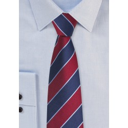 Collegiate Stripe Skinny Tie in Red and Blue