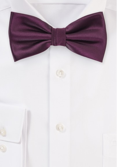 Plum Color Bow Tie