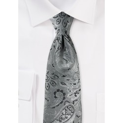 Rich Paisley Tie in Mercury Silver