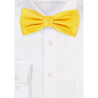 Formal Bow Tie in Daffodil