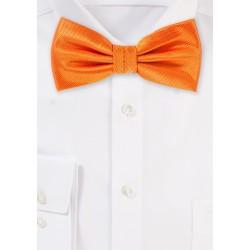 Dressy Mens Bow Tie in Tangerine
