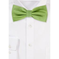 Kiwi Green Bow Tie