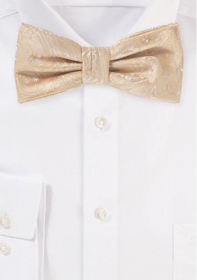 Paisley Bow in Golden Champagne