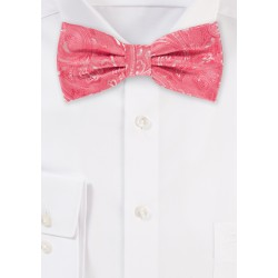 Paisley Mens Bow Tie in Coral