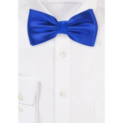 Horizon Blue Mens Bow Tie
