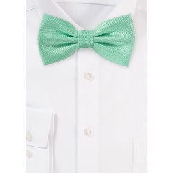 Summer Bow Tie in Mint