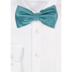 Light Teal Green Bow Tie